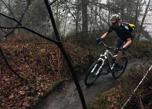 A rider zooms down some flowing singletrack